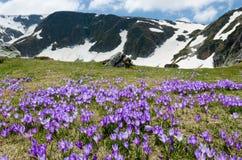 Montanhas de Rila Foto de Stock
