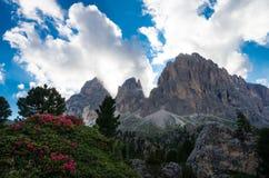 Montanhas de Sassolungo e de Sassopiatto, Itália fotos de stock royalty free