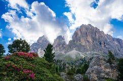 Montanhas de Sassolungo Sassopiatto Langkofel Dolomiti, Itália foto de stock