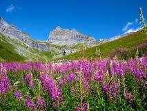 Montanhas de Sion Imagens de Stock Royalty Free