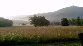 Montanhas de Smokey imagens de stock royalty free