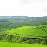 Montanhas de Sperrin Imagem de Stock Royalty Free