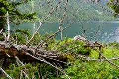Montanhas de Tatra fotografia de stock royalty free