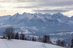 Montanhas de Tatra Imagens de Stock Royalty Free