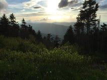 Montanhas de Tennessee Fotografia de Stock