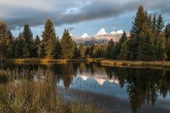 Montanhas de Teton que refletem na água na aterrissagem do ` s de Schwabacher fotografia de stock royalty free