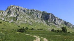 Montanhas de Trascau Imagem de Stock