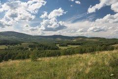 Montanhas de Ural no verão Imagens de Stock Royalty Free