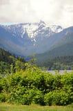 Montanhas de Vancôver do norte Fotografia de Stock