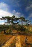 Montanhas de Vietnam, Dalat foto de stock