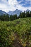 Montanhas de Wyoming acima de um campo imagem de stock royalty free