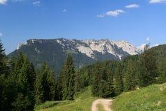 Montanhas de Zahmer Kaiser fotos de stock royalty free