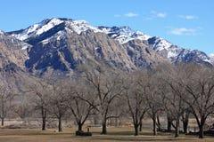 Montanhas dianteiras de Wasatch Fotos de Stock Royalty Free