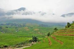 Montanhas do arroz Imagens de Stock Royalty Free