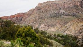 Montanhas do Bighorn Imagem de Stock