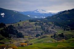 Montanhas do Bighorn Foto de Stock