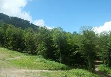 Montanhas do Cáucaso 10 Imagem de Stock