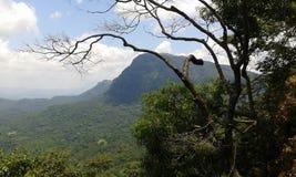 Montanhas do céu Imagem de Stock Royalty Free