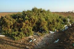 Montanhas do lixo na praia longe das estâncias turísticas de Egito Fotografia de Stock Royalty Free