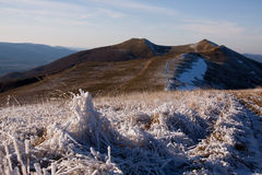 Montanhas do lobo, relé do ³ do gà do wilcze, bieszczady Fotos de Stock Royalty Free