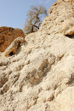 Montanhas do Mar Morto Imagens de Stock