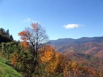 Montanhas do outono Imagens de Stock