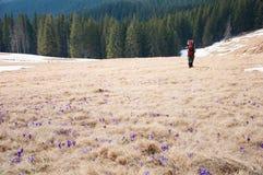 Montanhas do turista na primavera Imagem de Stock Royalty Free