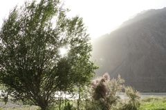 Montanhas do verão Fotos de Stock