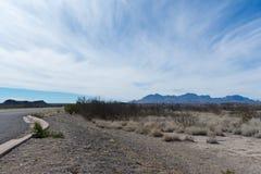 Montanhas e árvore no deserto perto de uma estrada Imagem de Stock