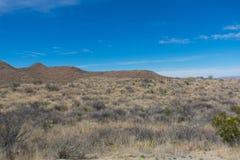 Montanhas e árvore no deserto perto de uma estrada Foto de Stock
