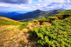 Montanhas e campo da paisagem sob o céu azul Fotos de Stock Royalty Free