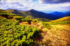 Montanhas e campo da paisagem sob o céu azul Foto de Stock