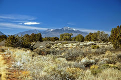 Montanhas e deserto, Waputki Fotografia de Stock Royalty Free