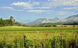 Montanhas e exploração agrícola Imagem de Stock Royalty Free