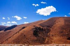 Montanhas e floresta tibetanas imagem de stock