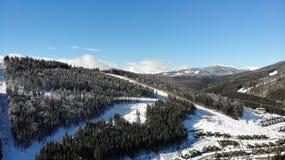 montanhas e florestas do inverno foto de stock