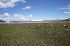 Montanhas e lago em Tibet Imagens de Stock Royalty Free