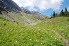Montanhas e prado alpino Foto de Stock