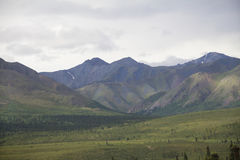 Montanhas e vale do parque nacional de Denali Imagens de Stock Royalty Free