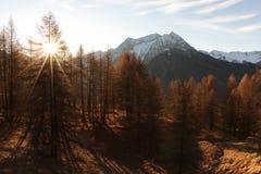 Montanhas em Autumn Alps Piemonte Val di Susa Valle Argentera Fotografia de Stock Royalty Free