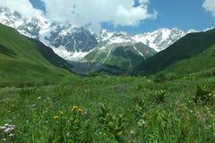 Montanhas em Geórgia foto de stock