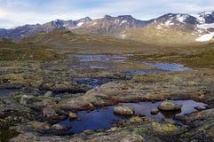 Montanhas em Noruega fotografia de stock