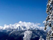 Montanhas em Sochi fotos de stock royalty free