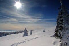 Montanhas eslovacas fotos de stock