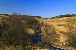 Montanhas florestados do vale de Afon Llia Fotografia de Stock Royalty Free