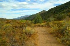 Montanhas, folha, e céu de Califórnia Fotografia de Stock