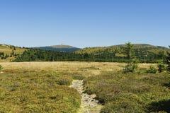 Montanhas Hruby Jesenik de Jeseniky Foto de Stock Royalty Free