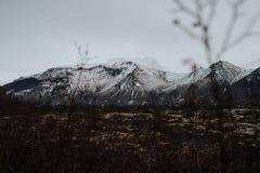 Montanhas islandêsas nevado Imagens de Stock Royalty Free
