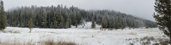 Montanhas místicos do inverno fotos de stock royalty free