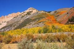 Montanhas magníficas nas vizinhanças o Northlake foto de stock royalty free
